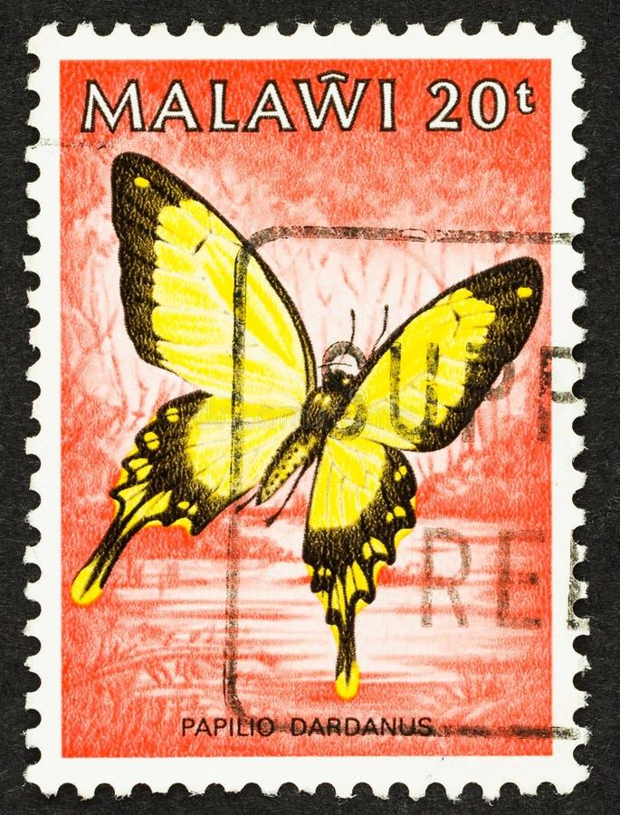 Afrikaanse moerstaart op Malawi Stamp stock afbeelding