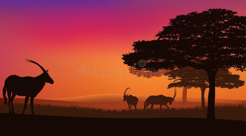 Afrikaanse Savanne vector illustratie