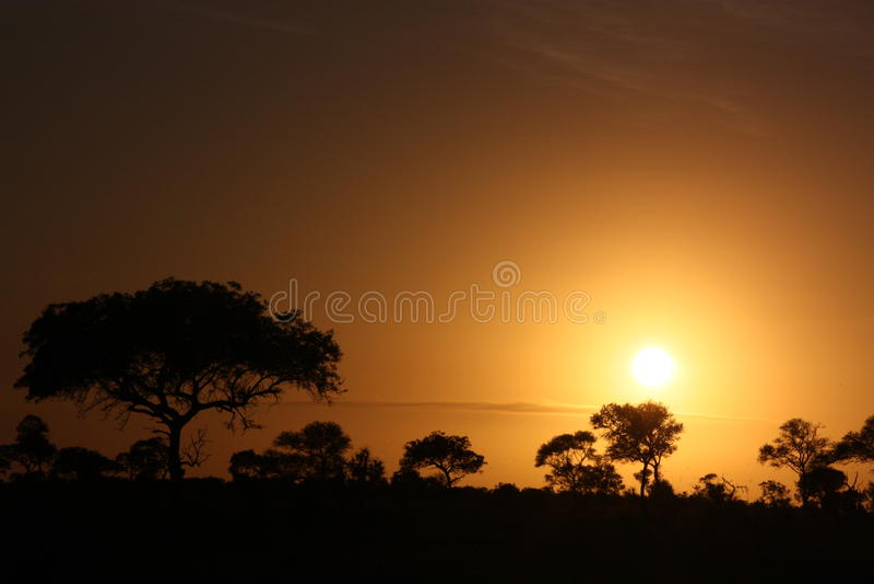 Afrikaanse Zonsondergang royalty-vrije stock fotografie