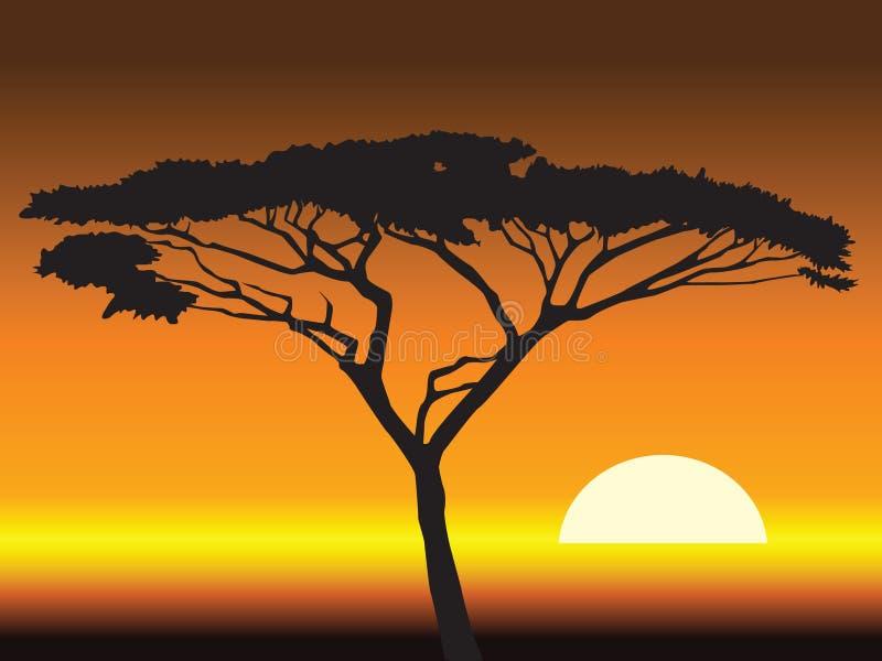 Afrikaanse zonsondergangachtergrond. illustratie royalty-vrije illustratie