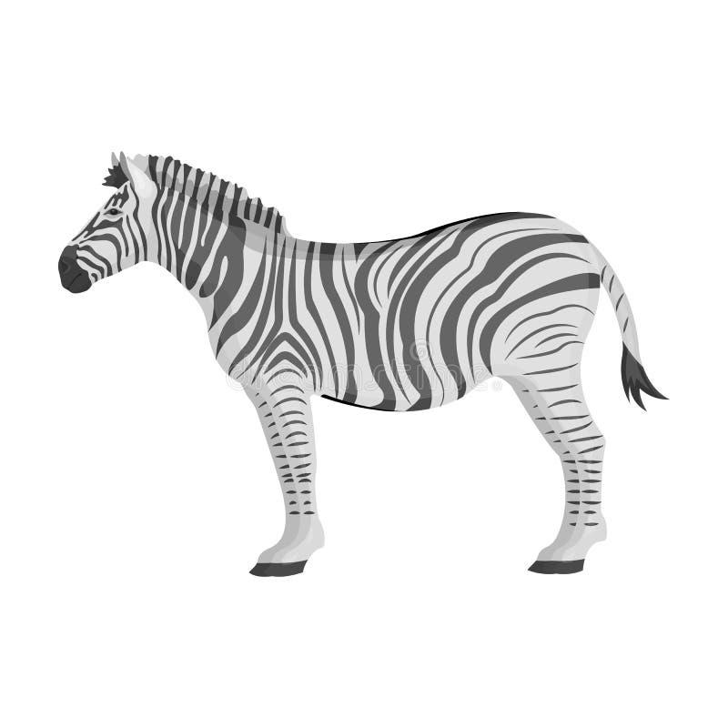 Afrikan ökensebra Löst klyva-traskat djur, enkel symbol för sebra i monokrom illustration för materiel för stilvektorsymbol vektor illustrationer