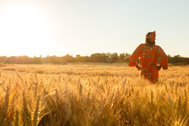 Afrikanerin in der traditionellen Kleidung, die auf einem Gebiet der Ernte steht stockbild