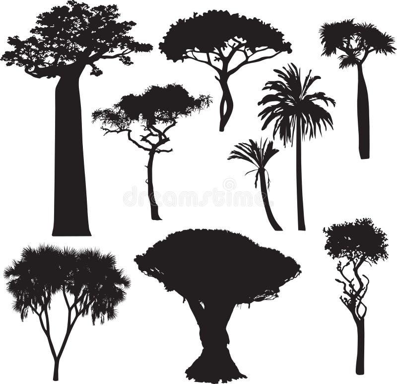 Afrikanische Baumschattenbilder vektor abbildung
