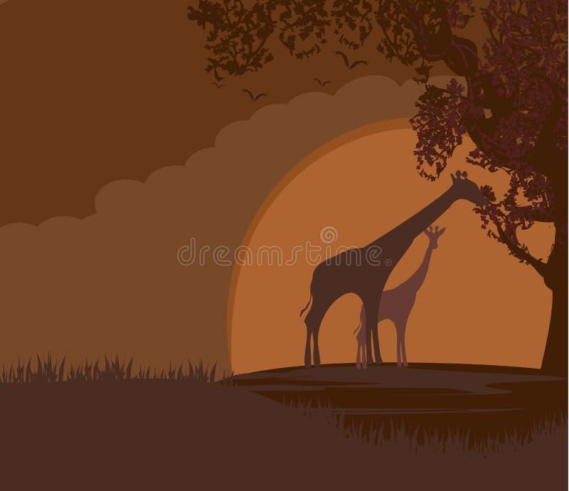 Afrikanische Landschaft mit wilden Giraffen lizenzfreie abbildung