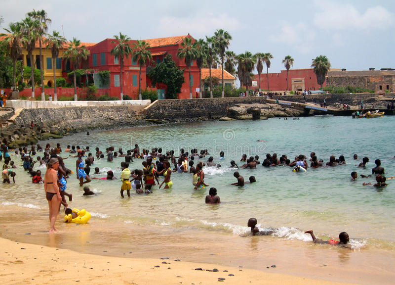 Afrikanische Schwimmer stockbild