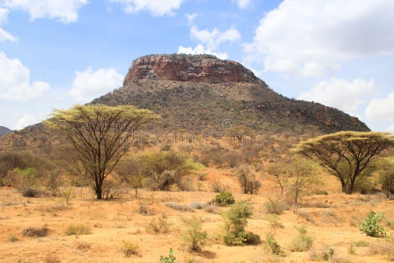 Afrikanische trockene heiße Savanne mit getrockneten Anlagen und Bergen lizenzfreie stockfotografie