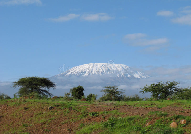 Afrikanischer Berg Kilimanjaro lizenzfreie stockfotos
