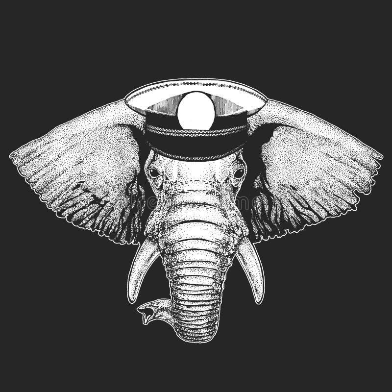 Afrikanischer oder indischer Elefant-Vektordruck für Kinder Capitan, Piratentier E Design für Kindergarten vektor abbildung