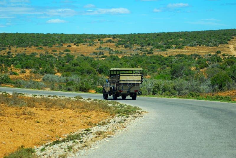 Afrikanischer Safariausflug lizenzfreies stockbild