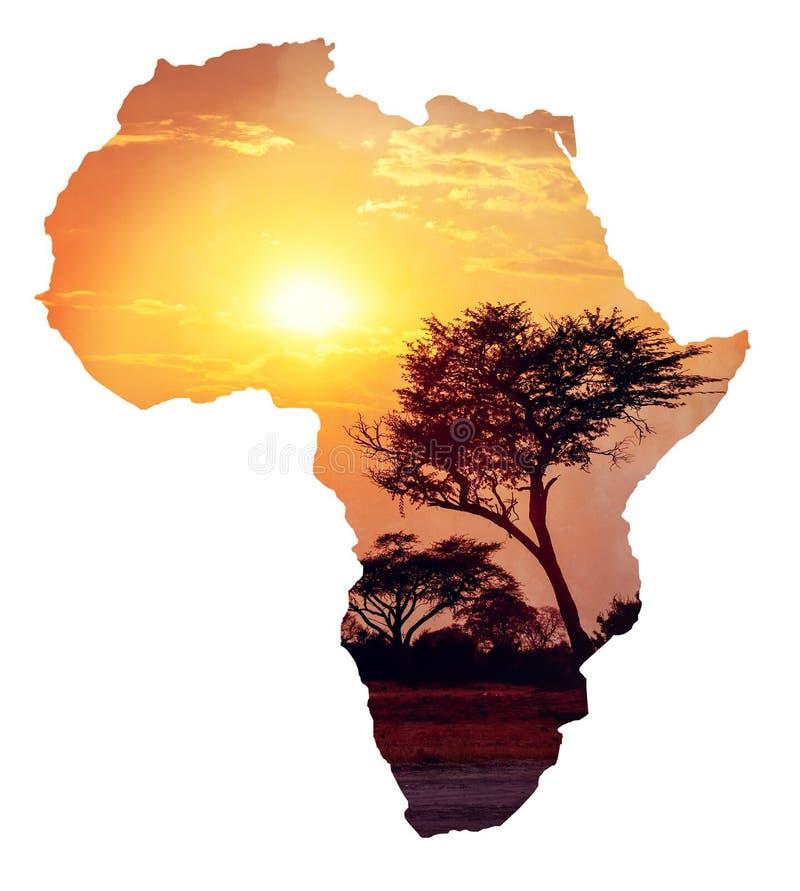 Afrikanischer Sonnenuntergang mit Akazie, Karte von Afrika-Konzept