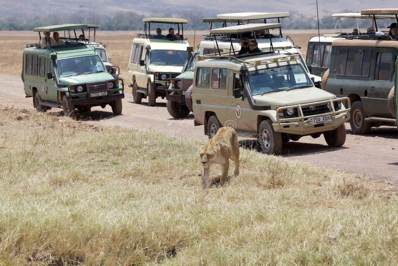 Afrikanischer Tourismus lizenzfreie stockbilder