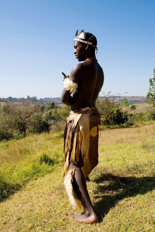 Afrikanischer Zulutänzer stockbilder