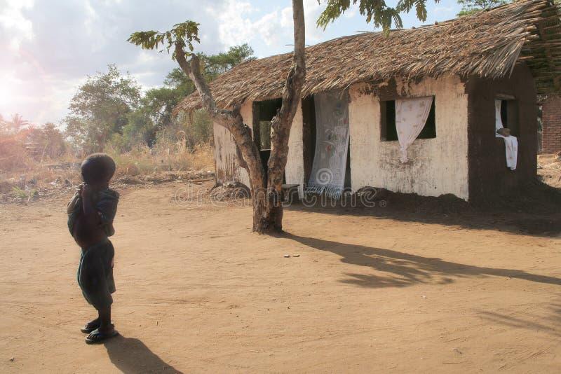 Afrikanisches Tageslicht stockbild