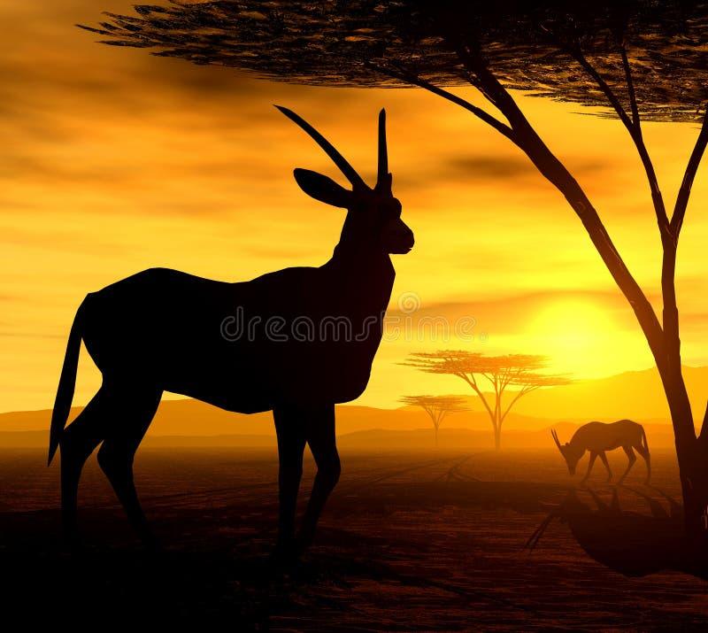 afrikansk antilopande vektor illustrationer