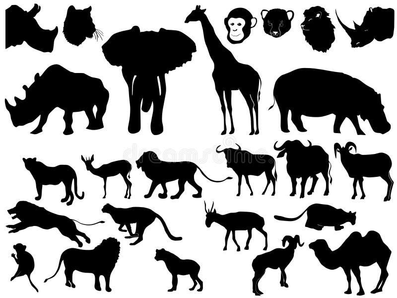 afrikansk djursamling vektor illustrationer