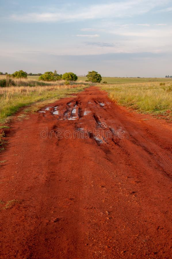 Afrikansk grusväg, Sydafrika royaltyfria bilder