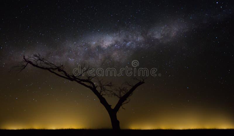 Afrikansk himmel royaltyfri fotografi