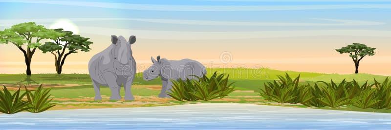 Afrikansk kvinnlig för vit noshörning och ungt i den afrikanska savannahen nära en brunnsort stock illustrationer