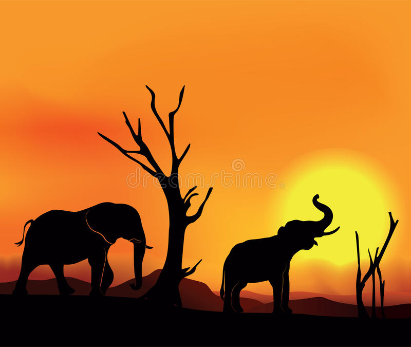 Afrikansk landskapsolnedgång med elefanter vektor illustrationer
