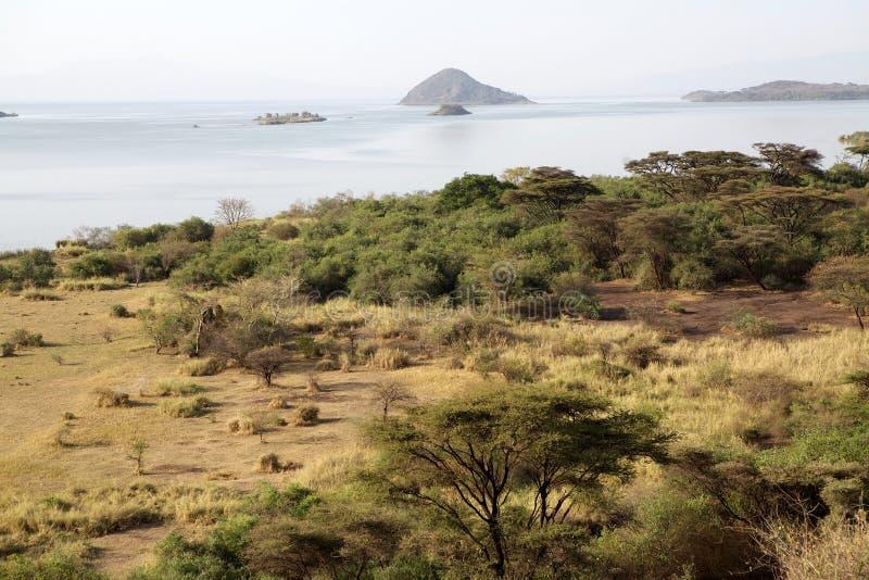 Afrikansk savann och sjö royaltyfria bilder