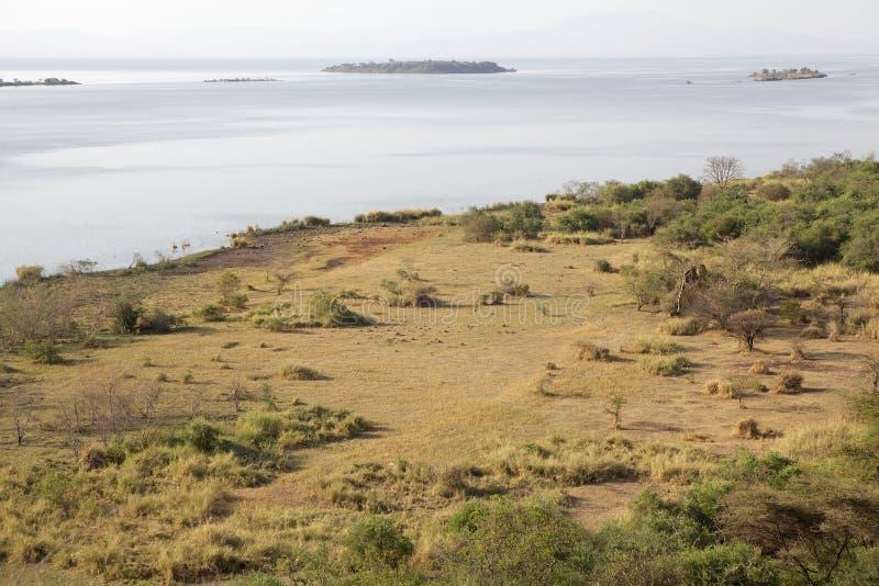 Afrikansk savann och sjö arkivfoto