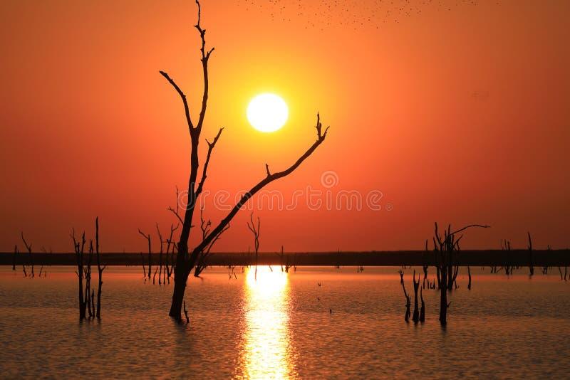 Afrikansk solnedgång över sjön Kariba royaltyfri foto