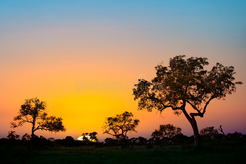 Afrikansk solnedgång i Sydafrika royaltyfri foto