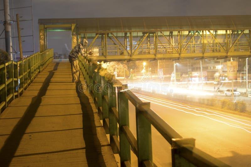 Afrikansk strimma för bronattljus arkivbild