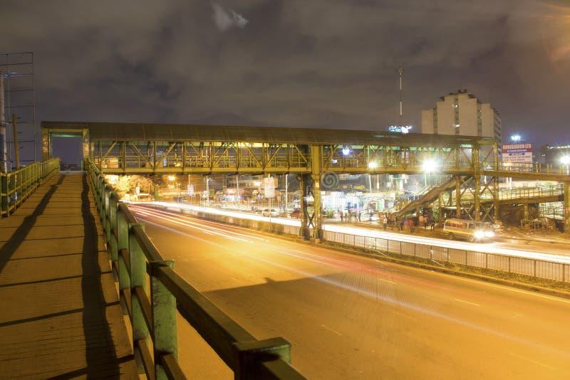 Afrikansk strimma för bronattljus fotografering för bildbyråer