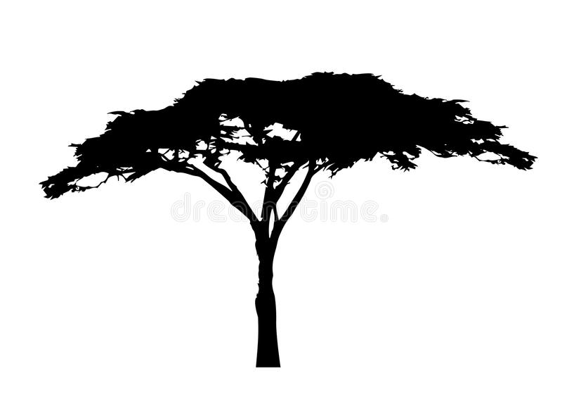 Afrikansk trädsymbol, akaciaträdkontur, isolerad vektor royaltyfri illustrationer