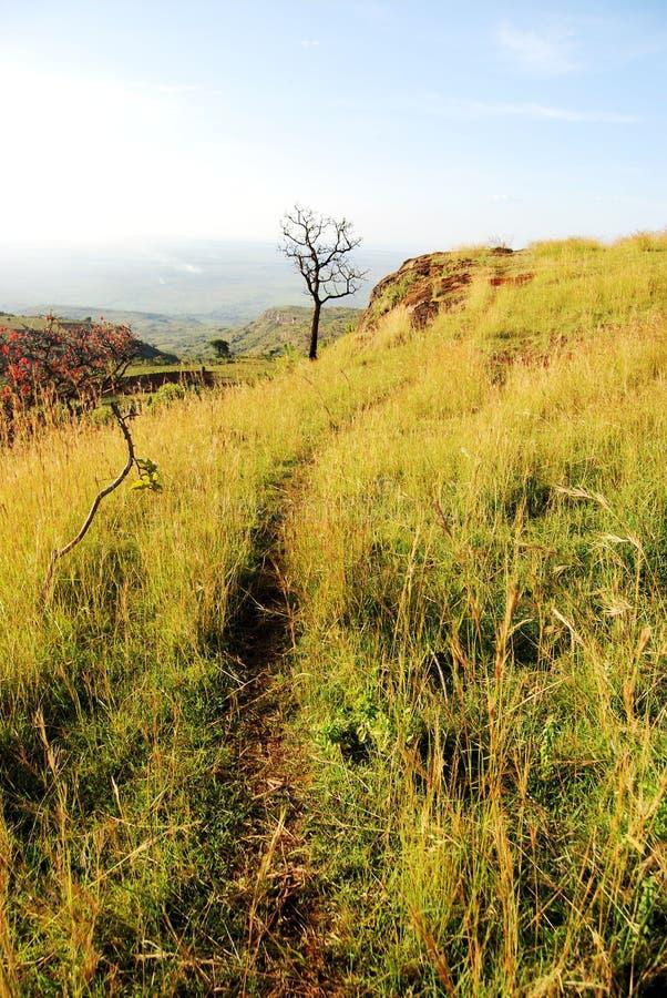 afrikansk trail royaltyfria foton