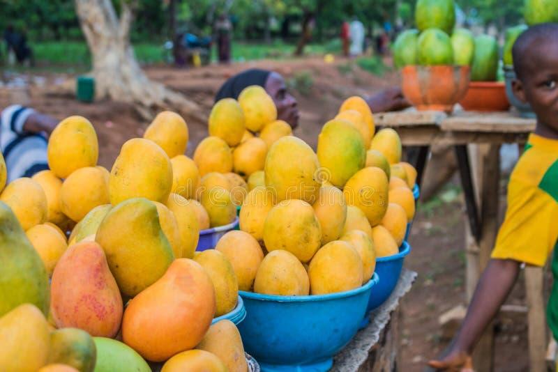 Afrikanska röda, gula och gröna mango 2 fotografering för bildbyråer