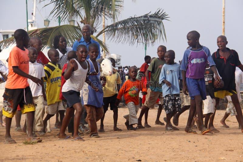 Afrikanska ungar ståtar med ett får arkivfoton