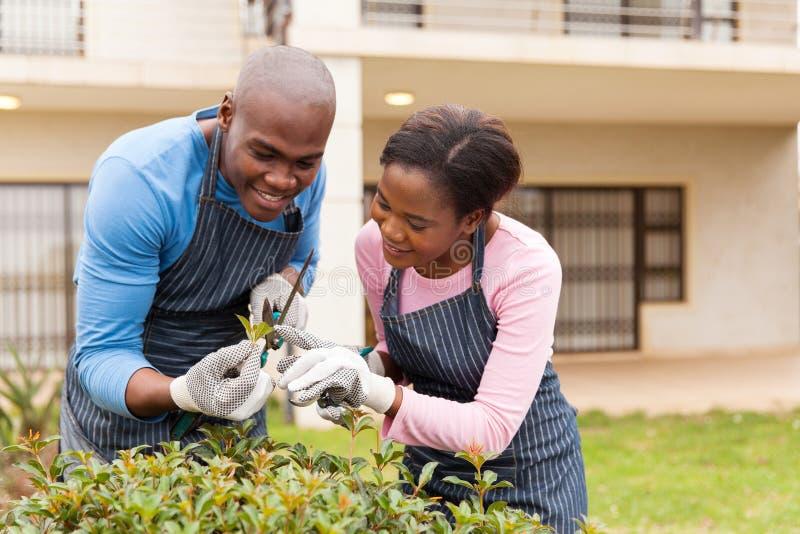 Afrikanskt arbeta i trädgården för par arkivfoton