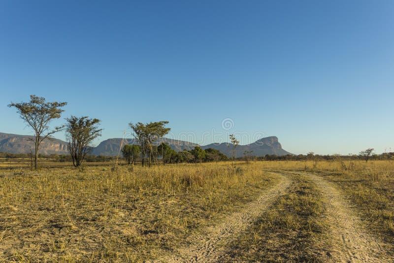 Afrikanskt landskap och grusväg royaltyfria foton