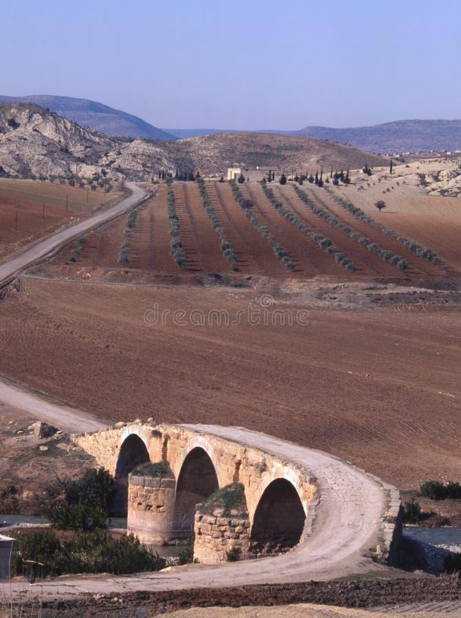 afrinbron korsar den roman nordliga floden fotografering för bildbyråer
