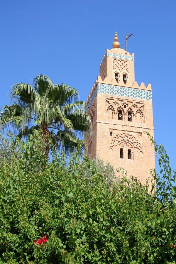 Afrique - Maroc - Marrakesh imagen de archivo libre de regalías