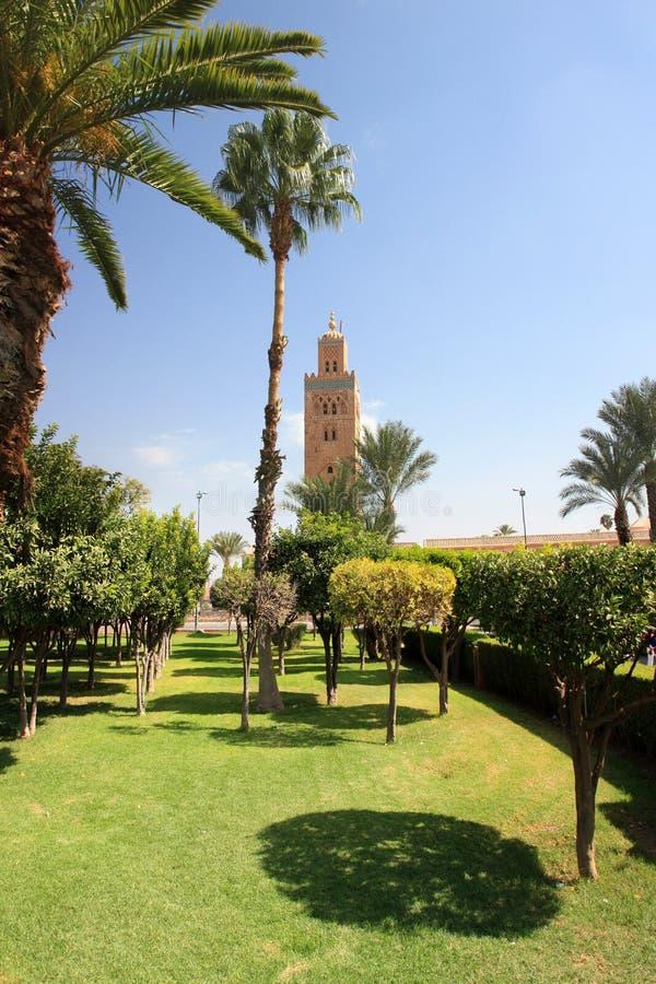 Afrique - Maroc - Marrakesh fotos de archivo libres de regalías