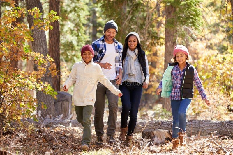 Afroamerikaner-Familie, die durch Fall-Waldland geht stockfotografie