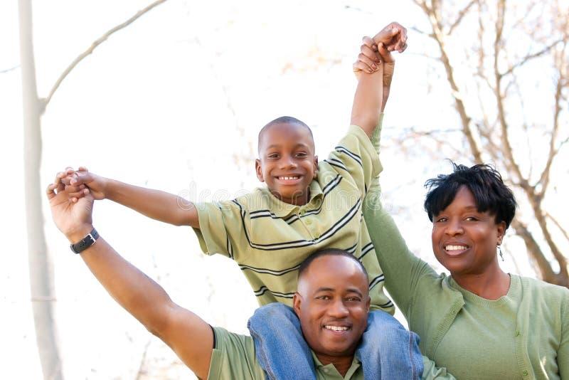 Afroamerikaner-Familie im Park stockbild
