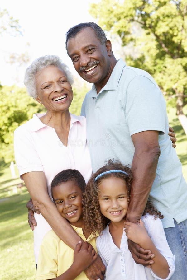 Afroamerikaner-Großeltern mit den Enkelkindern, die in Park gehen stockfotografie