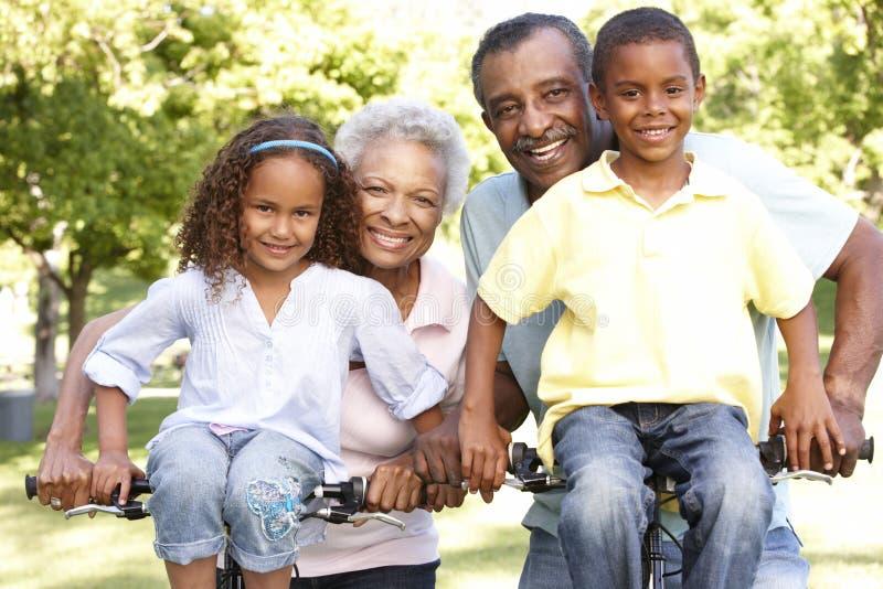 Afroamerikaner-Großeltern mit den Enkelkindern, die in Park radfahren stockbilder