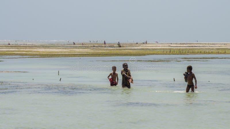 Afrykańscy dzieci bawić się w oceanie zdjęcie royalty free