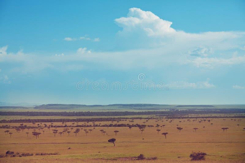 afrykańscy krajobrazy fotografia stock