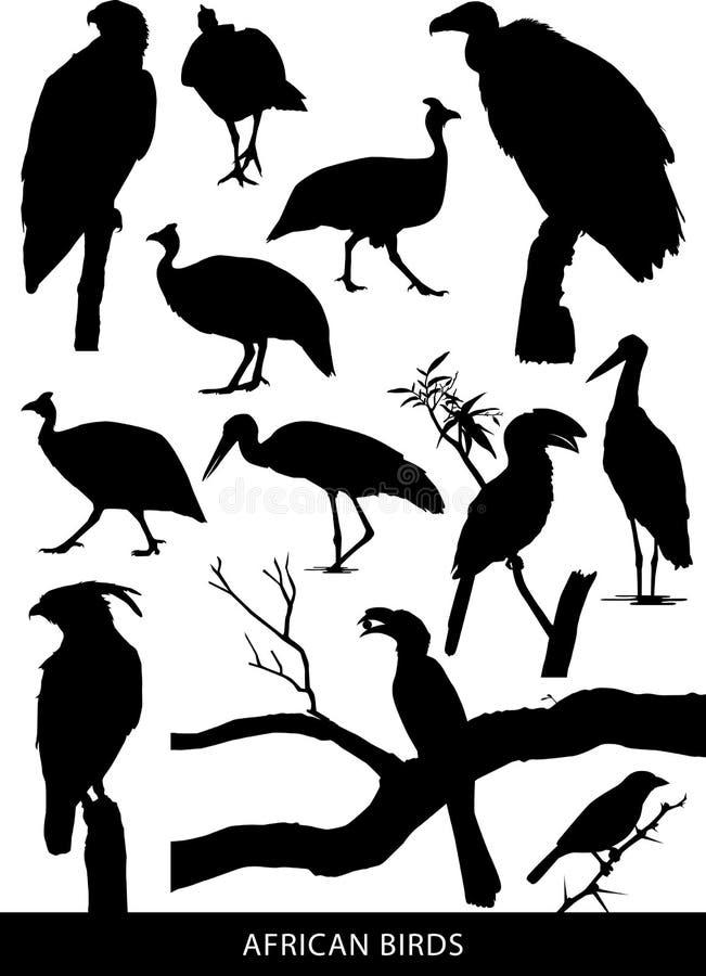 Afrykańscy ptaki i ptaki drapieżni ilustracja wektor