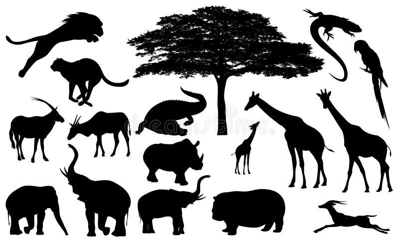 Afrykańska przyroda ilustracja wektor