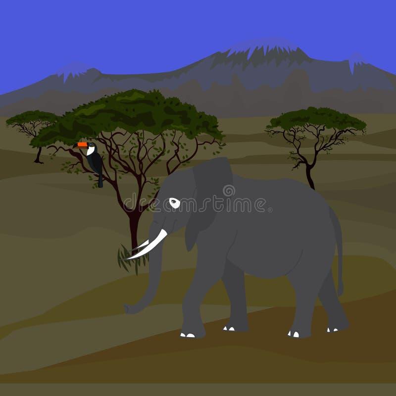 Afrykańska sawanna wieczór krajobraz również zwrócić corel ilustracji wektora ilustracji