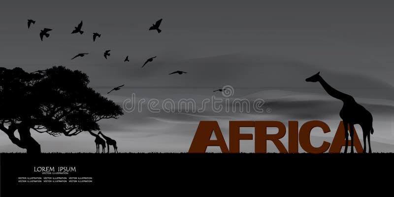 afrykańska tła natury serii przyroda w kontekście niebieskie chmury odpowiadają trawy zielone niebo białe wispy natury Sawanna af ilustracja wektor