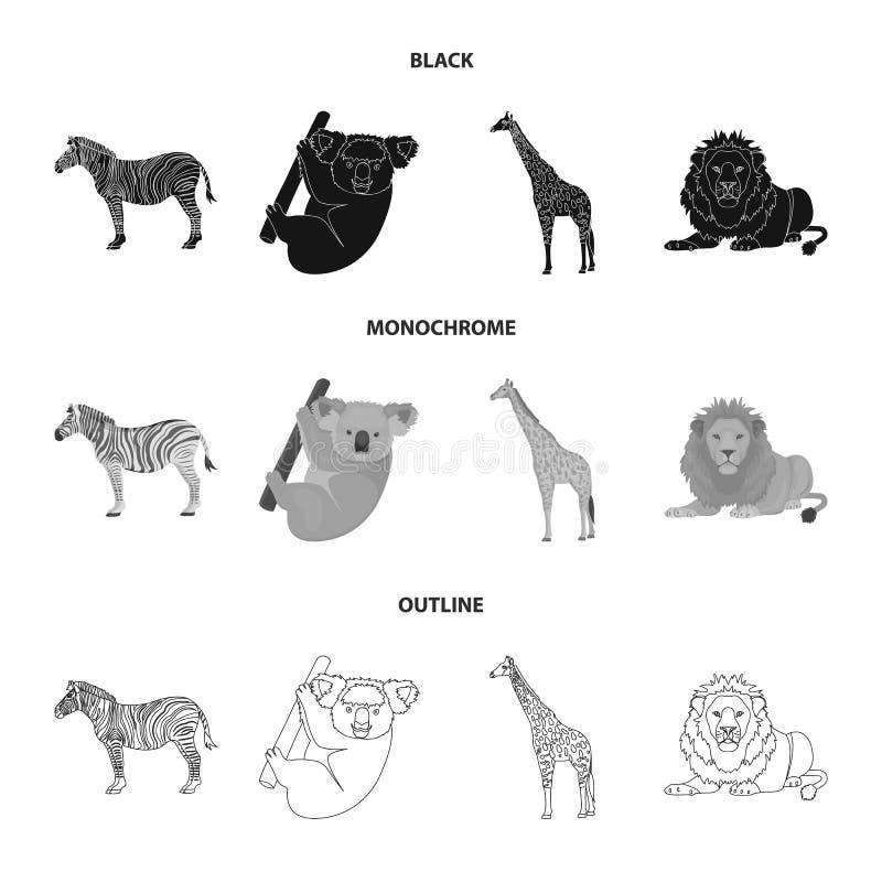 Afrykańska zebra, zwierzęca koala, żyrafa, dziki drapieżnik, lew Dzikie zwierzę ustawiać inkasowe ikony w czarnym, monochromatycz royalty ilustracja