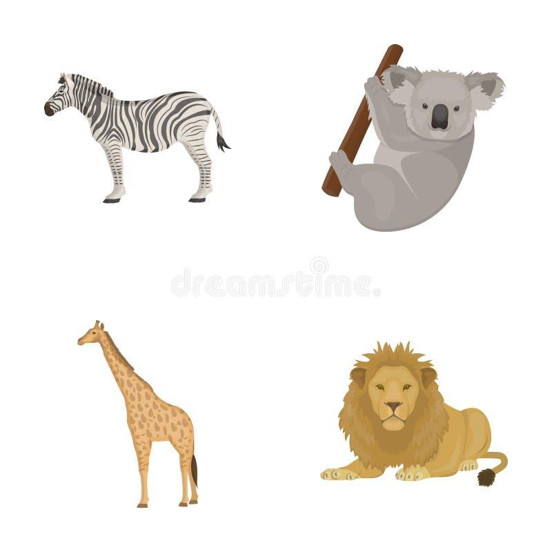 Afrykańska zebra, zwierzęca koala, żyrafa, dziki drapieżnik, lew Dzikie zwierzę ustawiać inkasowe ikony w kreskówce projektują we royalty ilustracja